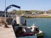 crane-to-boat